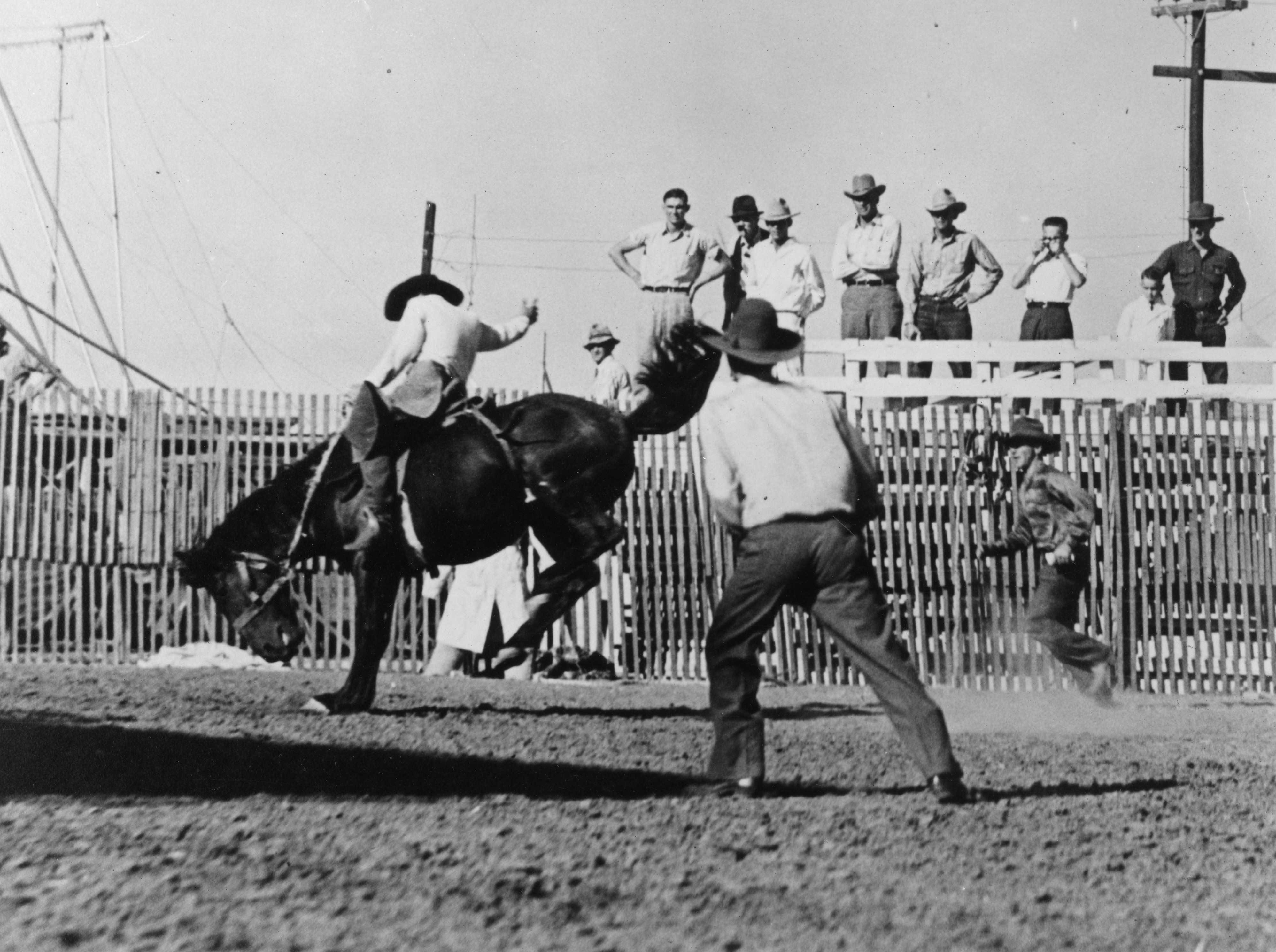 Bronco Bustin' Showmen and Their Spectacular Wild West Shows Event Image