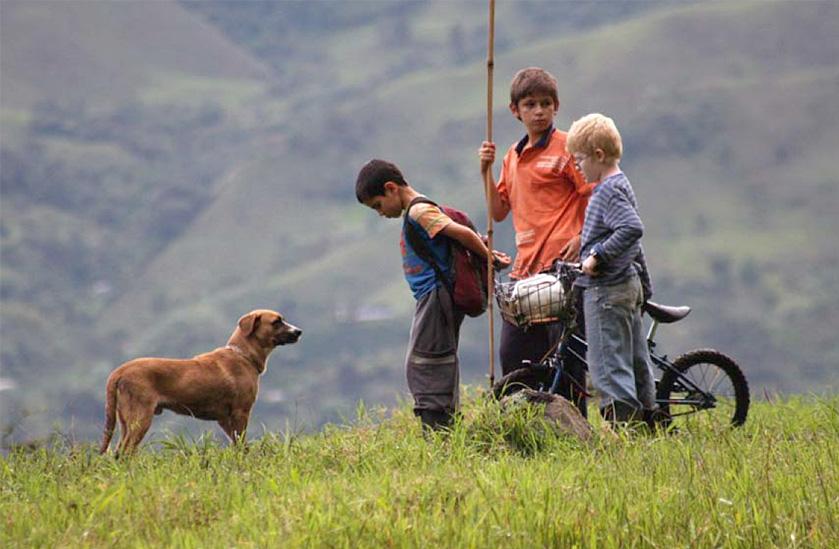 Los Colores de la Montana (The Colors of the Mountain) - Film Discussion Event Image