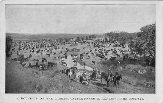 Cattle Ranching South of Dodge City: 1920-present - Open House Main Splash Image